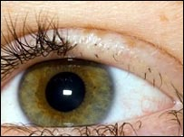 How to Stop Pulling Out Eyelashes? | What is Psychology?