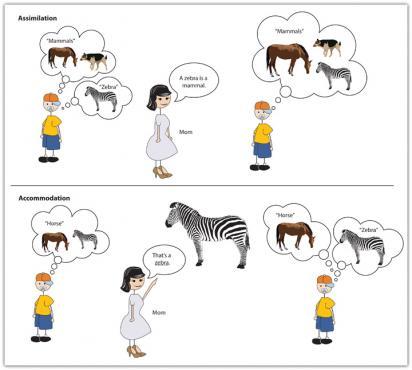 Assimilation Psychology Boatremyeaton